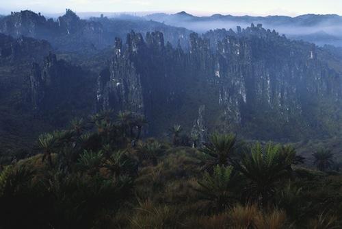 Typical Papuan Landscape natgeocreative.com