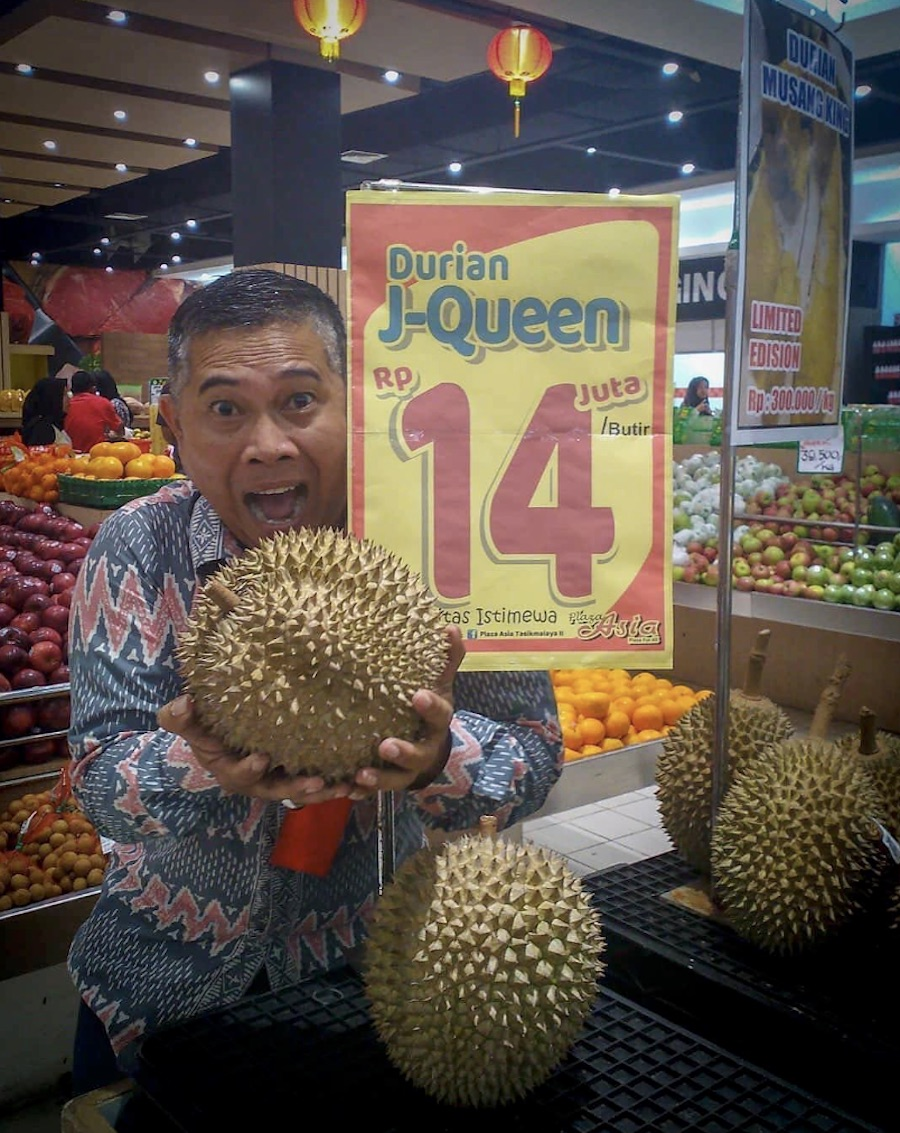 J Queen Durian 14 Million 3